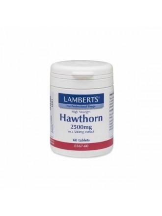 LAMBERTS HAWTHORN 2500MG 60TAB